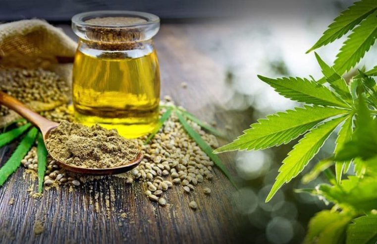 Everything You Need To Know Before Buying Hemp CBD Oil