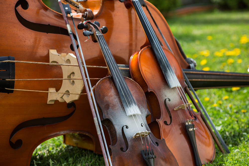 Classical Stringed Instruments – Buying and Maintenance Tips