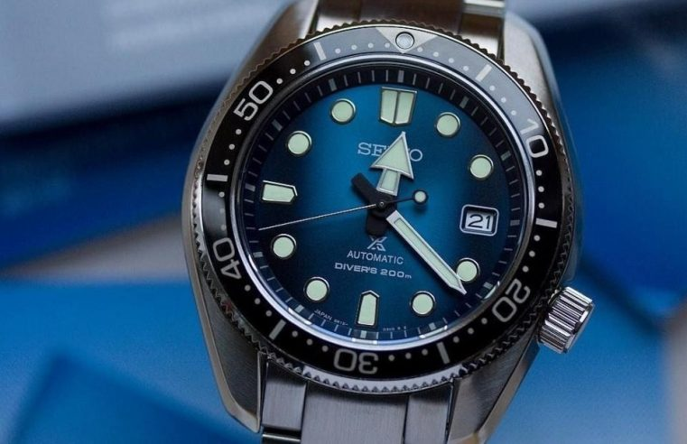 Get To Know About The Seiko Turtle Watches